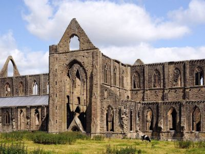 Tintern Abbey South